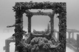 Выставка Николя Флок Подводные пейзажи Мультимедиа Арт Музей