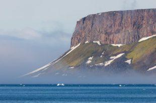 Выставка Из Русской Арктики с любовью Дарвиновский музей
