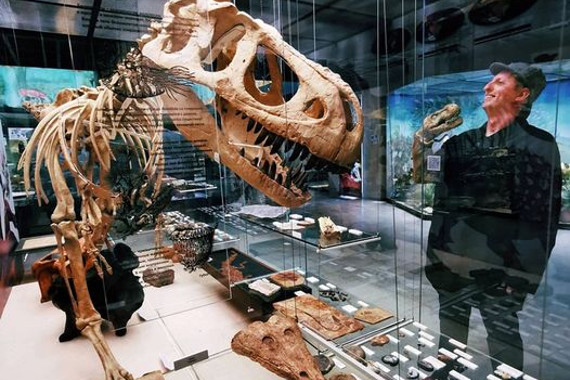 Предоставлено: Государственный Дарвиновский музей.