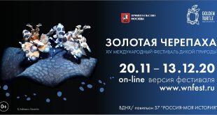 XIV Международный фестиваль дикой природы «Золотая черепаха».
