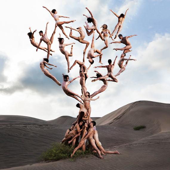 Роб Вудкокс «Древо жизни». Предоставлено: Центр фотографии имени братьев Люмьер.