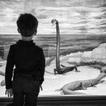 "Жерар Юфера ""Музей естествознания Милана"" Милан, март 2018. © Gérard Uféras Предоставлено: Мультимедиа Арт Музей, Москва."